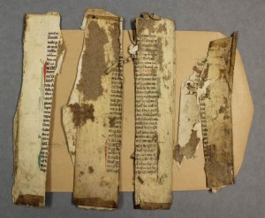 Fig. 4: The residual binding material on several of the fragments.